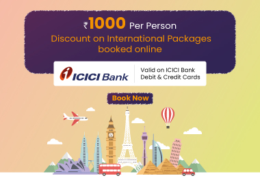 ICICI Bank International Packages