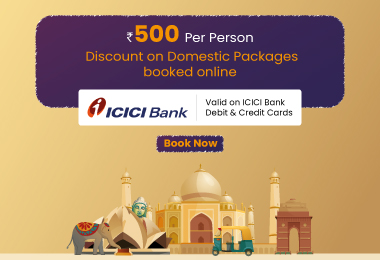 ICICI Domestic Packages