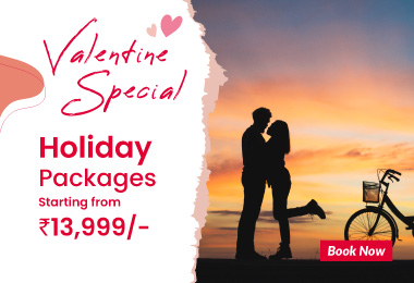 Valentine Special Packages