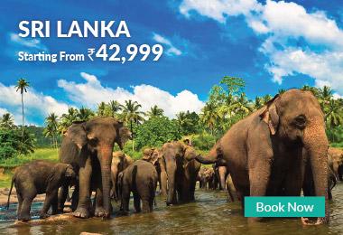 Sri Lanka 42,999/-