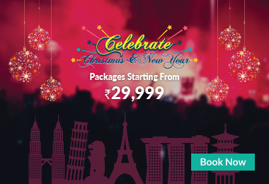 Christmas & New Special Packages