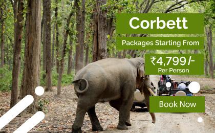 Corbett Packages