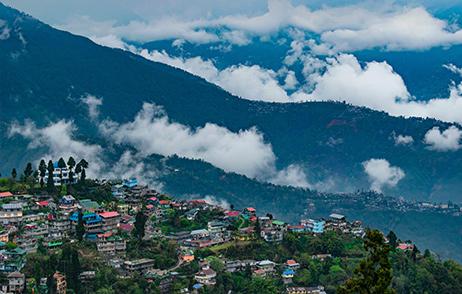 Darjeeling%20(1)
