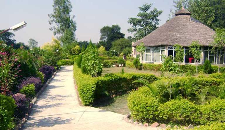 Corbett-Tiger-Den-Resort-Restaurant2.jpg