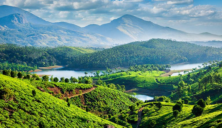 tea-plantations-and-muthirappu-munnar-kerala-india