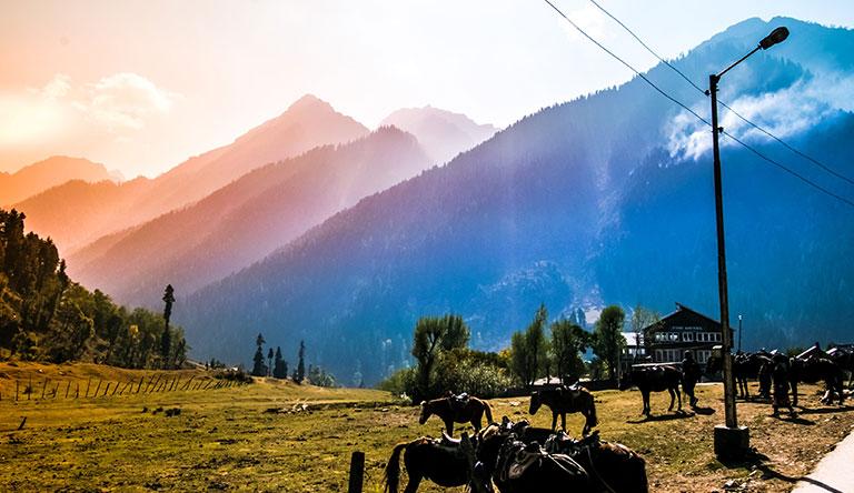 aru-valley-pahalgam-kashmir-india.jpg