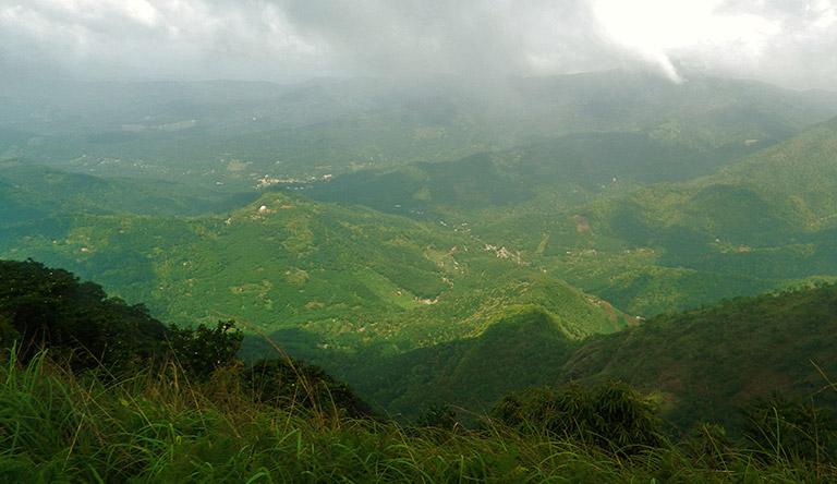 cardamom-hills-thekkady-kerala-india.jpg