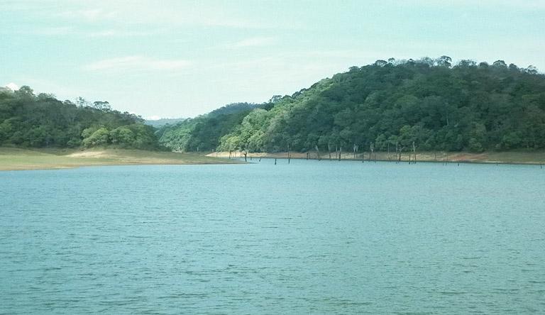 thekkady-periyar-lake-kerala-india