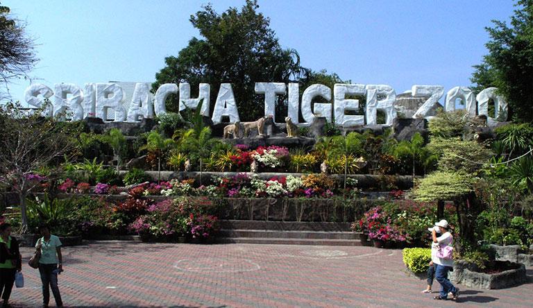 sri-racha-tiger-zoo-pattaya-thailand