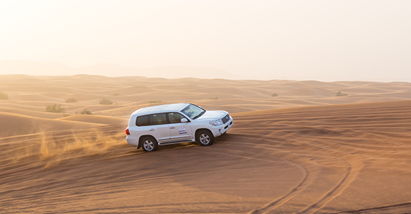 Desert Safari with Barbeque Dinner