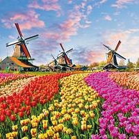 Netherlands Packages
